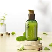 Интенсивная увлажняющая сыворотка на основе семян зеленого чая Innisfree The green tea seed serum 80 ml