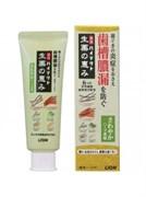 Зубная паста лечебного действия с ароматом свежих трав Lion Hitect Seiyaku, 90 г