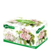Салфетки для лица Monalisa Bellagio Flower Garden Facial Tissue 200шт